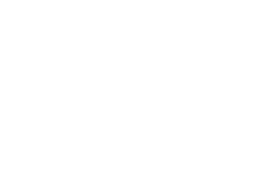 Vet To You